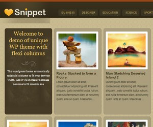 Preview Images for Templatic Premium WordPress Themes