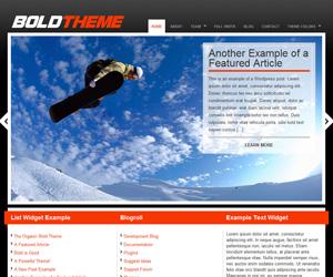 Bold Theme by Organic Themes