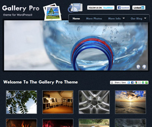 Preview Images for Primothemes Premium WordPress Themes
