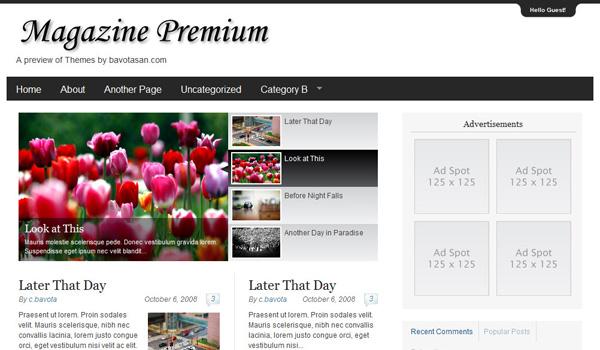 Magazine Premium