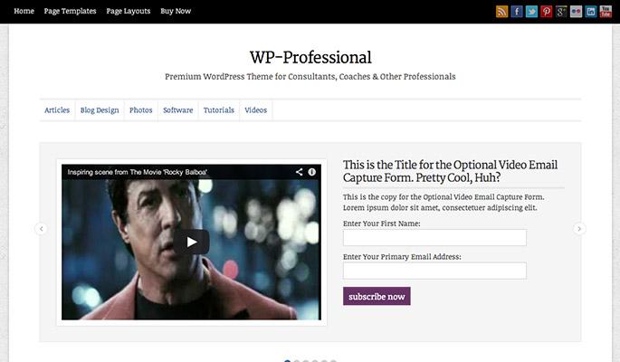WP-Professional