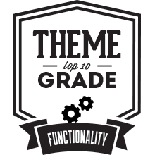 Top 10 Theme Functionality